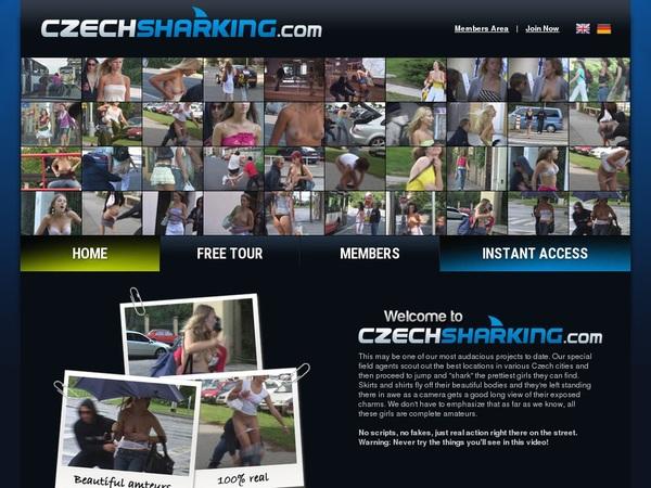 Premium Account For Czech Sharking