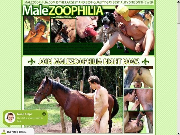 Male Zoophilia Passcode